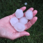 Large hail stones held in hand